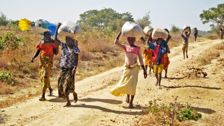 CAMEROON / MAROUA-MOKOLO 15/00095 Emergency help for displaced people Maroua Mokolo: Children carrying bags