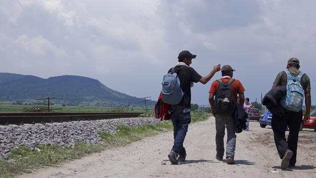 Acoger, proteger e integrar conclusiones del Foro Internacional de Migración y Paz