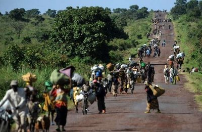 Informan situación dramática de refugiados de la República Centroafricana