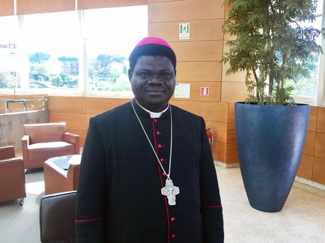 """""""Hay una agenda clara, unplan para islamizar las áreas cristianasen el llamado cinturón central deNigeria"""""""