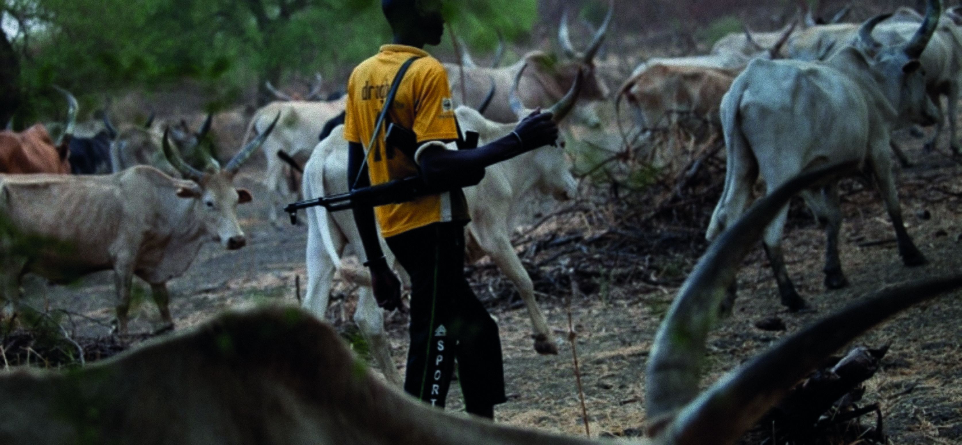 Nigeria: Los ataques de los pastores fulani, una tragedia desatendida e ignorada