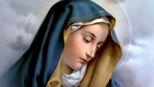 Recemos a la Santísima Virgen la oración que el Papa nos regaló para pedir por los enfermos
