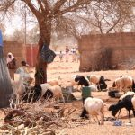 Níger: Reportan ataque yihadista a cristianos en Tillaberi